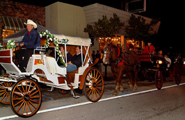 Evening on Antique Row horse and carriage rides.